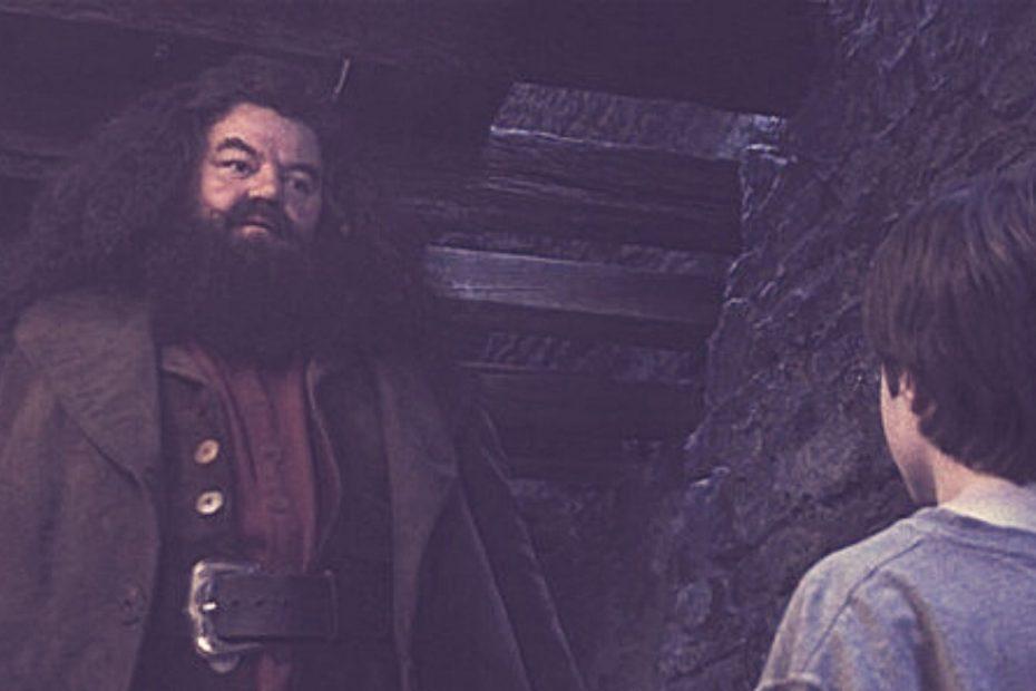 30 ANNI Sei un mago Harry - Hagrid da Harry Potter